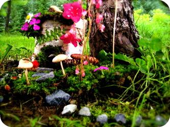 Mama's Fairy House 1