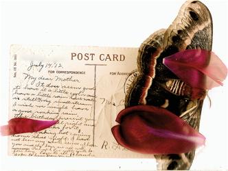 Postcardsfromthepastblanche14