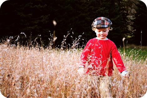 Runninghandsthroughgrass