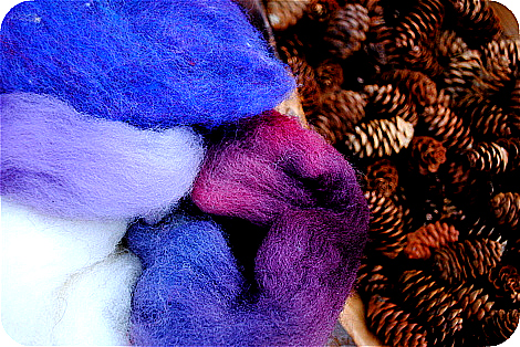Wool roving and pinecones