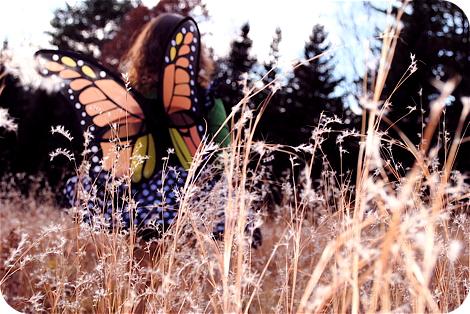 Butterflythinking