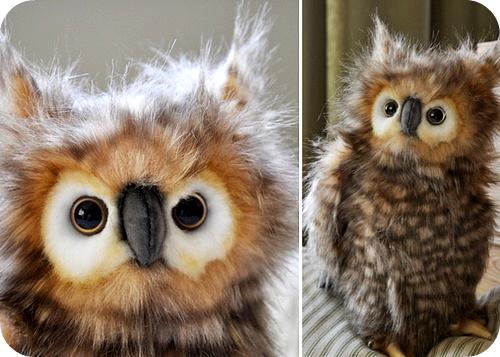 4.owl