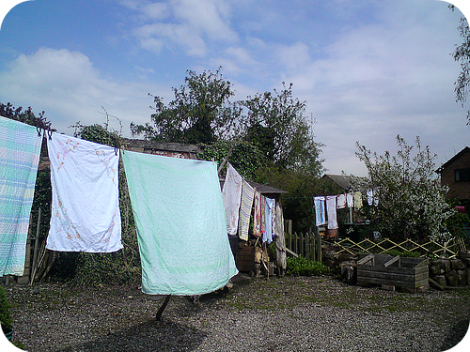 Washday 19